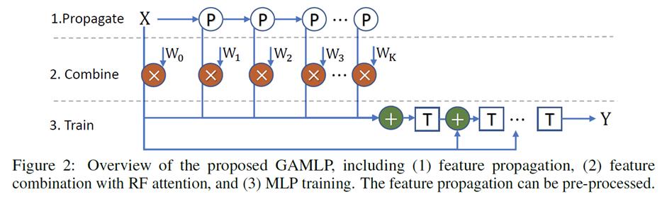 Graph Attention Multi-Layer Perceptron